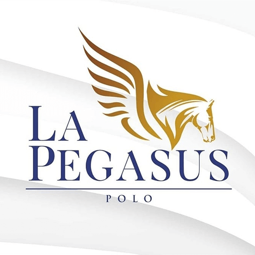 video streaming service provider clients lapegasus_polo.png